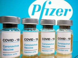 Anh có thể chấp thuận vaccine của Pfizer trong tuần này