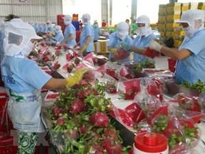 Thúc đẩy thương mại nông sản Việt Nam - Trung Quốc