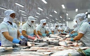 Dự báo xuất khẩu thủy sản năm 2021 có thể tăng 10%