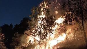 Hà Nội: Cháy lớn gần trường bắn Sóc Sơn