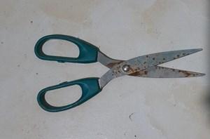 Nghệ An: Học sinh lớp 8 dùng kéo đâm tử vong học sinh lớp 5