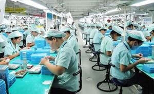 Đồng Nai: Vận động công nhân ngoại tỉnh ở lại đón Tết Nguyên đán