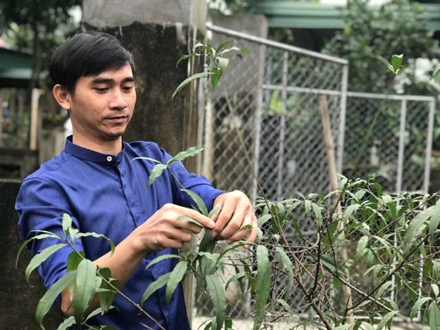 Người dân thành phố Hà Tĩnh chăm sóc cây cảnh chuẩn bị đón Tết.