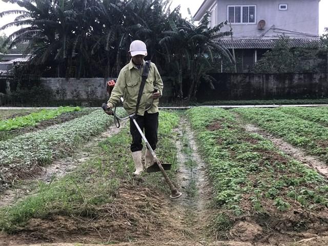 Nông dân huyện Thạch Hà vào vụ mới.