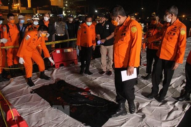 Indonesia phát hiện các phần thi thể nạn nhân vụ rơi máy bay - Ảnh 1