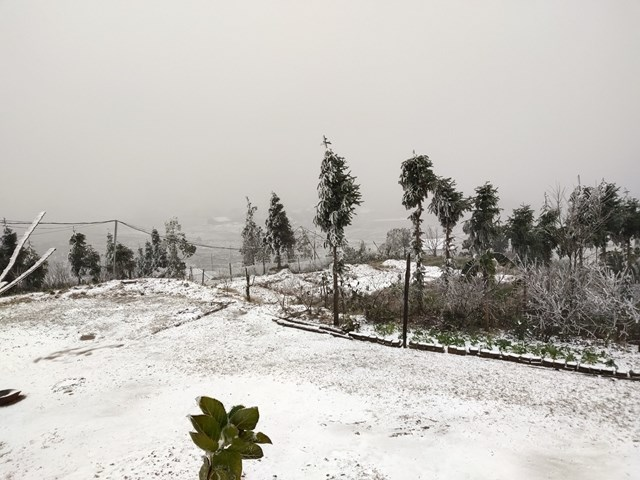 Nhiều thôn ở xã Y Tý tuyết rơi trắng xóa như: Mò Phú chải, Phìn Hồ, Trung Chải, Phan Cán Sử...