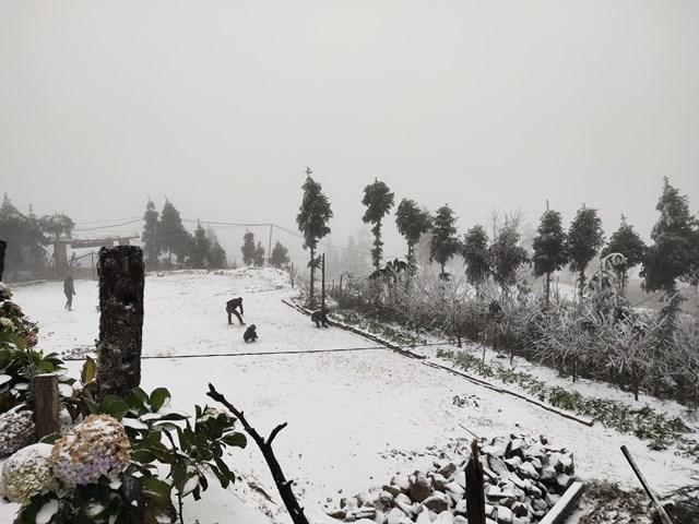 Quang cảnh tuyết rơi phủ trắng xóa. Ảnh: Phu Suy Thó.