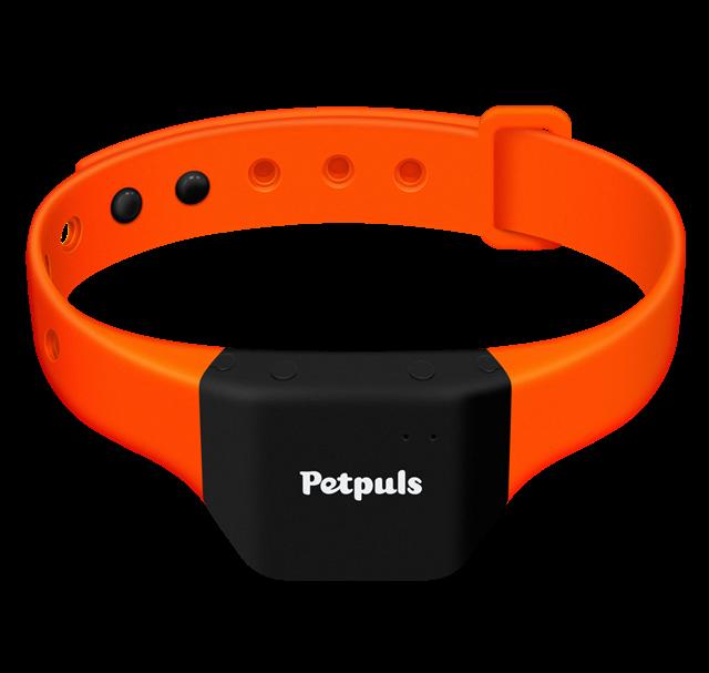Thiết kế của vòng cổ Petpuls.