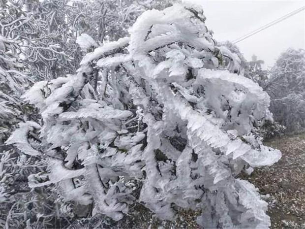 Dự báo sẽ xuất hiện mưa tuyết, băng giá ở các tỉnh miền núi phía Bắc. Ảnh: TTXVN.