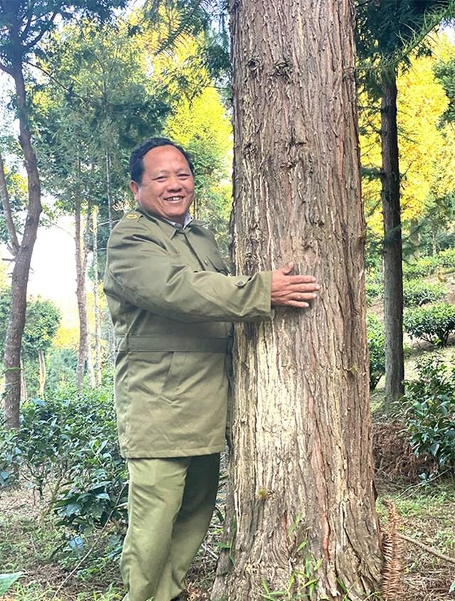 """Ông Vừ Vả Chống: """"Mỗi cái cây lớn lên như một người bạn của mình, bán đi thì tiếc lắm"""". Ảnh: PLO."""