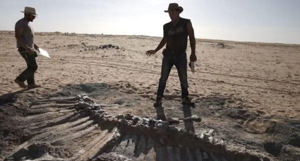 """Niger là quốc gia """"trù phú"""" về số lượng và sự đa dạng của các hóa thạch khủng long cổ đại. Quốc gia Tây Phi được xem như thiên đường đối với các nhà khảo cổ học vì các kho tàng hóa thạch khủng long khổng lồ phân bố ở nhiều nơi trên khắp đất nước."""
