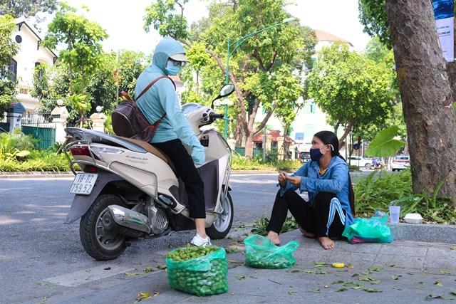 Một khách mua sấu trên đường Phan Đình Phùng.
