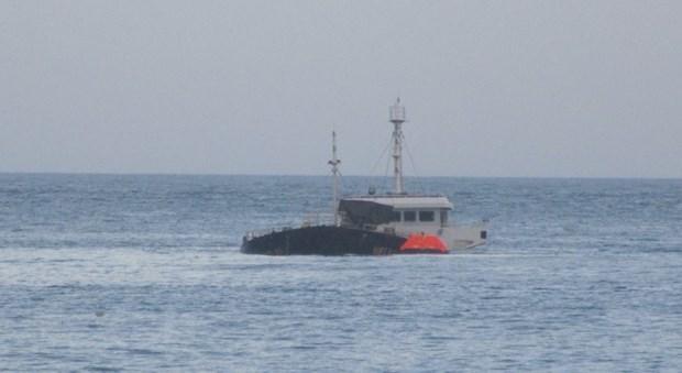 Tàu cá Bình Định bị chìm khi tránh bão số 9, 12 ngư dân mất tích - Ảnh 1
