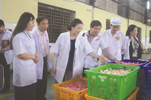 Phó Chủ tịch UBTƯ MTTQ Việt Nam Trương Thị Ngọc Ánh (thứ 3 từ trái sang) kiểm tra quy trình sản xuất tại Công ty Bánh kẹo Bảo Hưng, tỉnh Thái Bình. Ảnh: Duy Hưng.