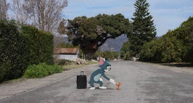 Cặp kỳ phùng địch thủ Tom và Jerry tái xuất trên màn ảnh rộng sau 3 thập kỷ - Ảnh 1