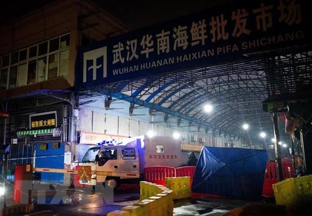 Chuyên gia WHO sẽ đến Trung Quốc điều tra nguồn gốc đại dịch Covid-19 - Ảnh 1