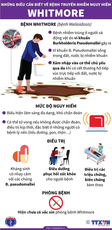 [Infographics] Những điều cần biết về căn bệnh nguy hiểm Whitmore - Ảnh 1