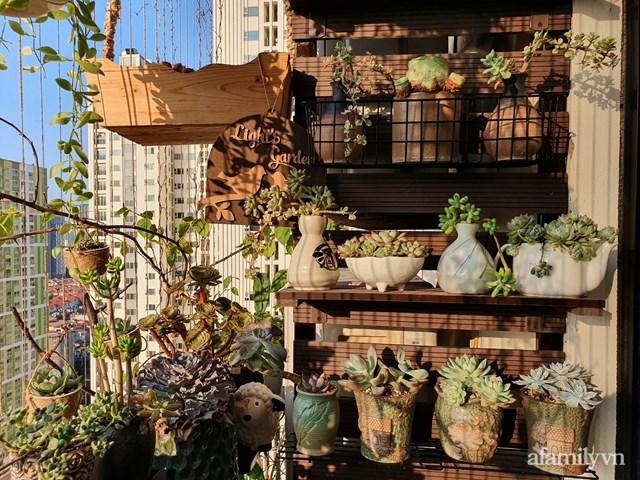 [ẢNH] Ngỡ ngàng vườn sen đá tuyệt đẹp chỉ 6 m2 ở Thủ đô Hà Nội - Ảnh 9