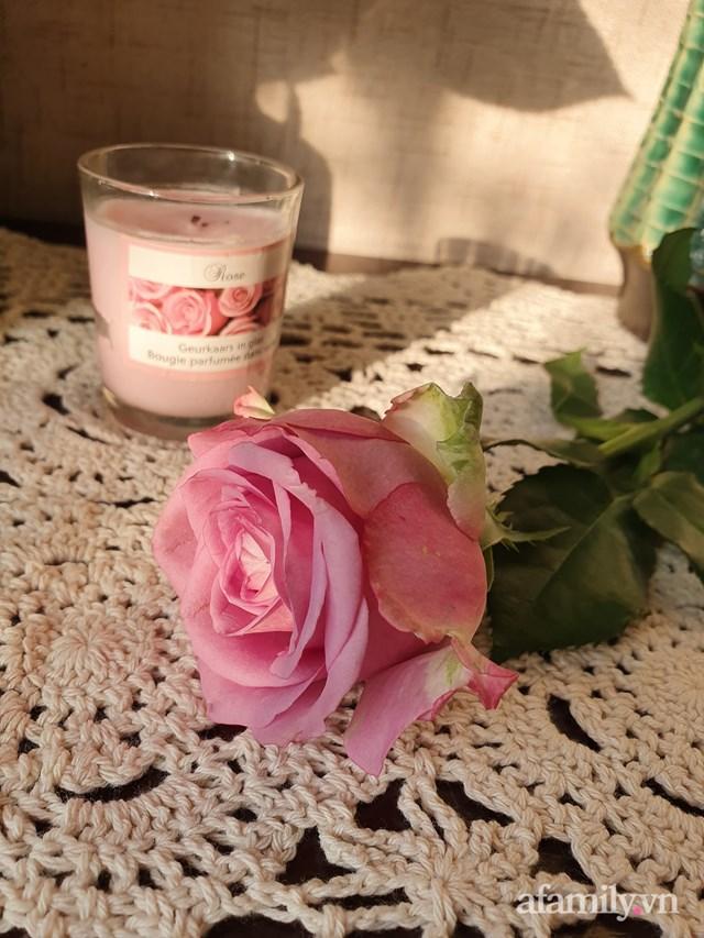 Ngoài sen, chị còn trồng hoa hồng.