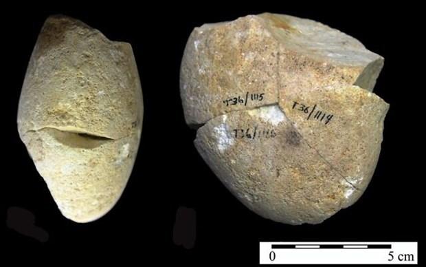 Một công cụ mài bằng đá đã được tìm thấy trong hang Tabun ở núi Carmel. (Nguồn: Đại học Haifa).