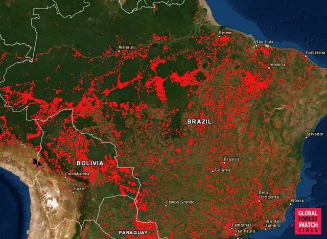 Rừng Amazon cháy dữ dội