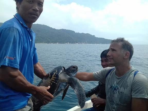 Thả một con rùa nặng 25 kg về lại biển