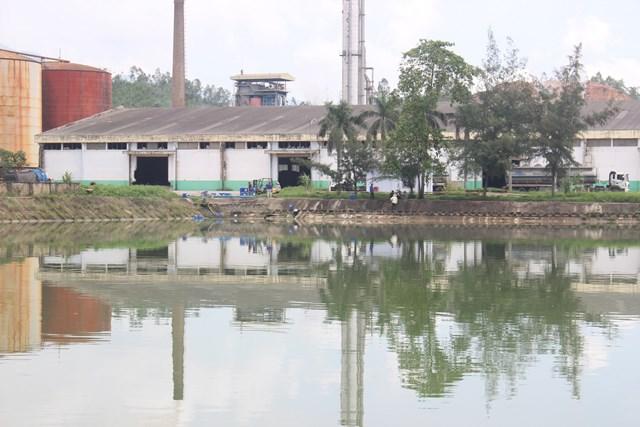 Quảng Nam: Đã khắc phục hậu quả sự cố tràn dầu fusel ở nhà máy cồn Đại Tân