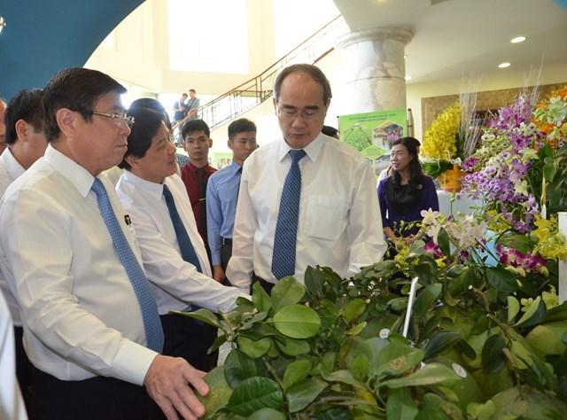 TP Hồ Chí Minh: Tiến tới nền nông nghiệp năng suất cao - 1
