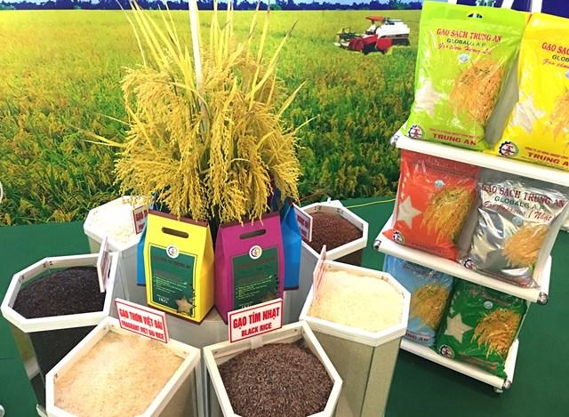 Phát triển sản phẩm lúa gạo có giá trị cao, được nhiều thị trường chấp nhận