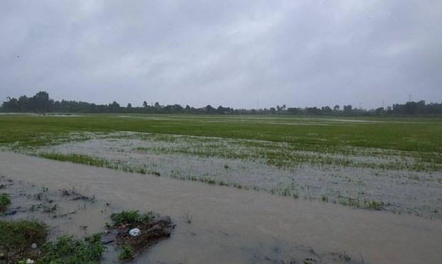 Tây Nguyên khẩn trương giúp dân khắc phục hậu quả sau mưa lũ