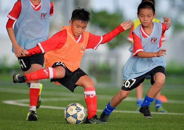 PVF tiếp tục tìm kiếm tài năng bóng đá trẻ