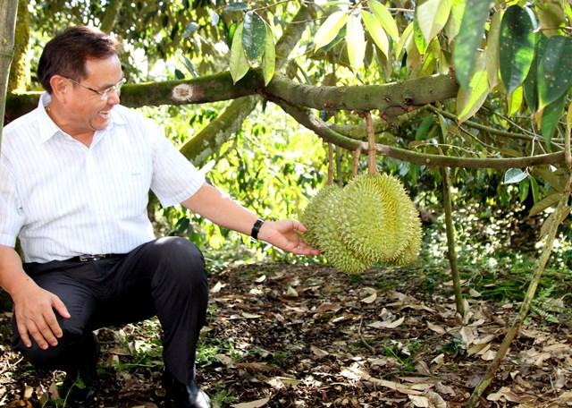 Chủ tịch UBTƯ Mặt trận Lào xây dựng đất nước tham quan các mô hình kinh tế - 2