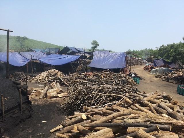 Nghệ An: Hàng chục lò đốt than hoạt động trái phép