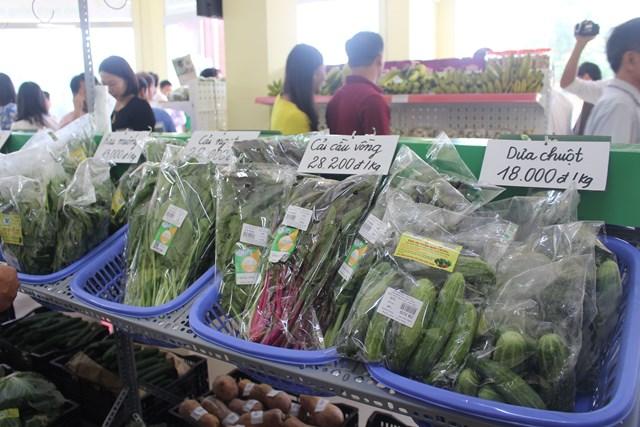 Nam Định: Khai trương Trung tâm giới thiệu sản phẩm nông nghiệp sạch - 1