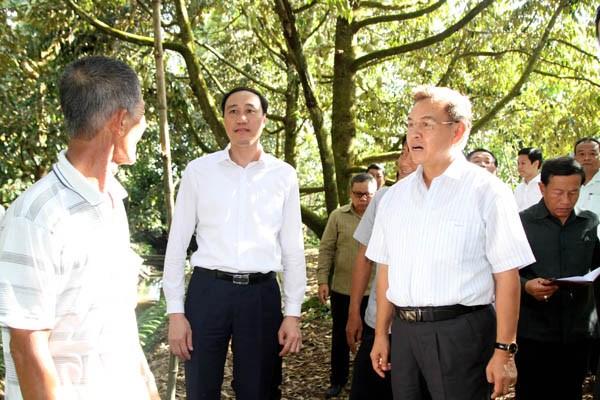 Chủ tịch UBTƯ Mặt trận Lào xây dựng đất nước tham quan các mô hình kinh tế - 1