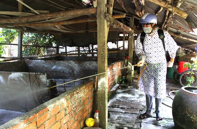 Thiệt hại do Dịch tả lợn châu Phi: 'Khát' nguồn kinh phí hỗ trợ - 2