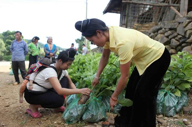 Lai Châu: Từng bước khắc phục khó khăn  trong xây dựng nông thôn mới