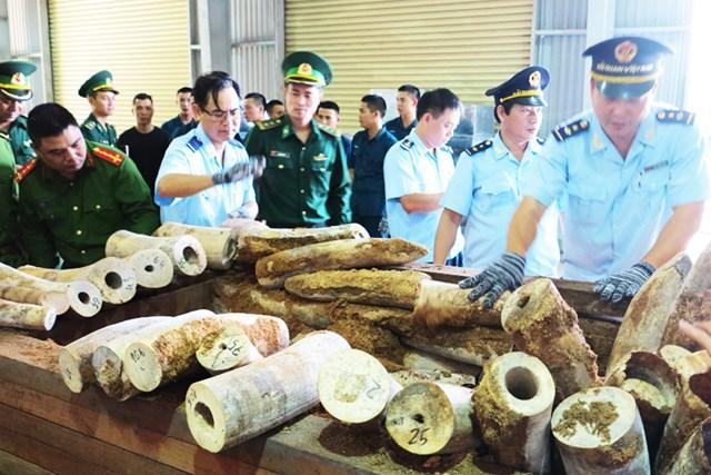 Phát hiện hơn 9 tấn ngà voi nhập lậu qua cảng Tiên Sa