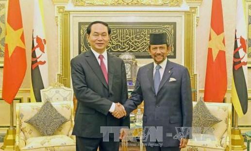 Chủ tịch nước Trần Đại Quang hội kiến, hội đàm với Quốc vương Brunei - 1