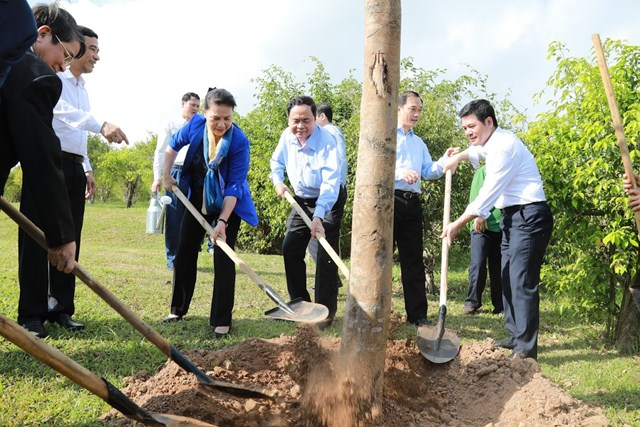 Nhanh chóng đưa Thái Bình hoàn thành mục tiêu xây dựng nông thôn mới - 11