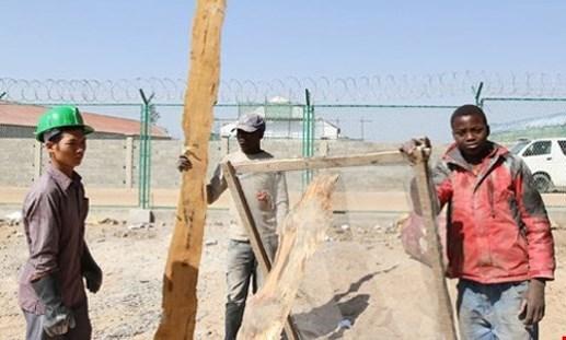 Khuyến cáo phòng chống dịch sốt vàng da cho lao động Việt tại Angola