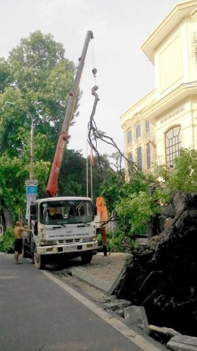 GS Nguyễn Lân Dũng: Phải biết sợ thiên nhiên (16/06/2015) - 2