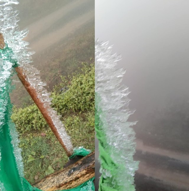Băng giá xuất hiện, bám vào cành cây, bờ rào ở xã Na Ngoi, Kỳ Sơn (Nghệ An).
