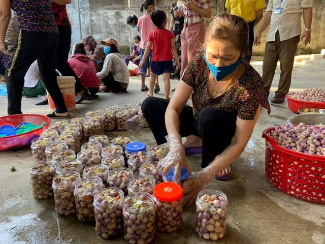 Người dân huyện miền núi làm cà muối ủng hộ Nhân dân Thành phố Hồ Chí Minh trong cơn đại dịch.