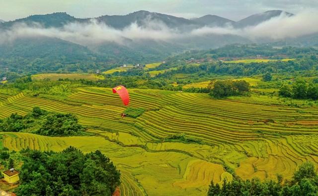 Những thửa ruộng bậc thang tuyệt đẹp tại Quảng Ninh