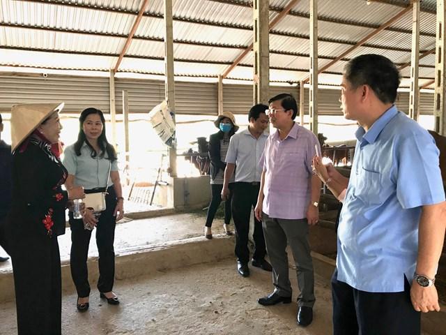 Đoàn công tác đã tới thăm mô hình kinh tế tại Công ty TNHH MTV trà Tâm Lan.