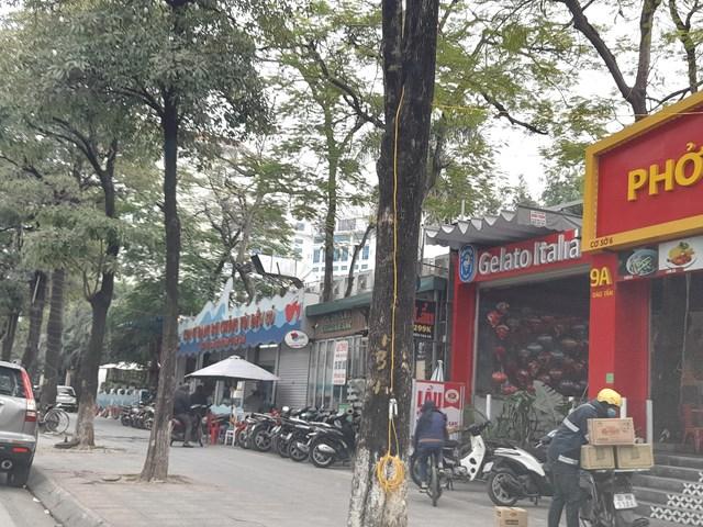 """Hai nhà hàng """"khủng"""" không phép tồn tại trên đất Vườn thú Hà Nội trong thời gian dài như thách thức pháp luật."""