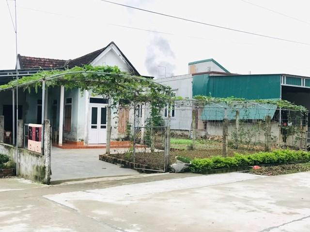 Một vườn mẫu của người dân xã Cẩm Hà.