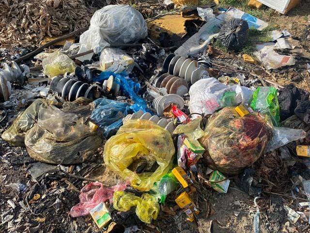 Nội tạng, xácđộng vật bị tấp vào bãi rác thường xuyên.
