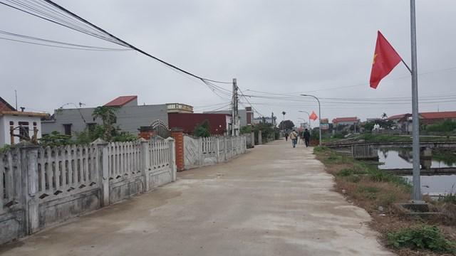 {ẢNH} Nông dân trồng cà chua ở Nam Định: 'Giờ một trăm đồng/cân cũng chả được vì không có người mua' - Ảnh 2